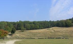 Peisaj împrejurimi municipiul Moreni