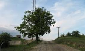 Poze din Municipiul Moreni