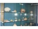 Muzeul de istorie - vase din Neolitic, Epoca Bronzului, figurine din lut
